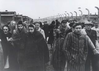 Groupe_de_deportes_rescapes_d_Auschwitz,_apres_la_liberation_du_camp._Pologne,_apres_le_27-01-1945_324119.95