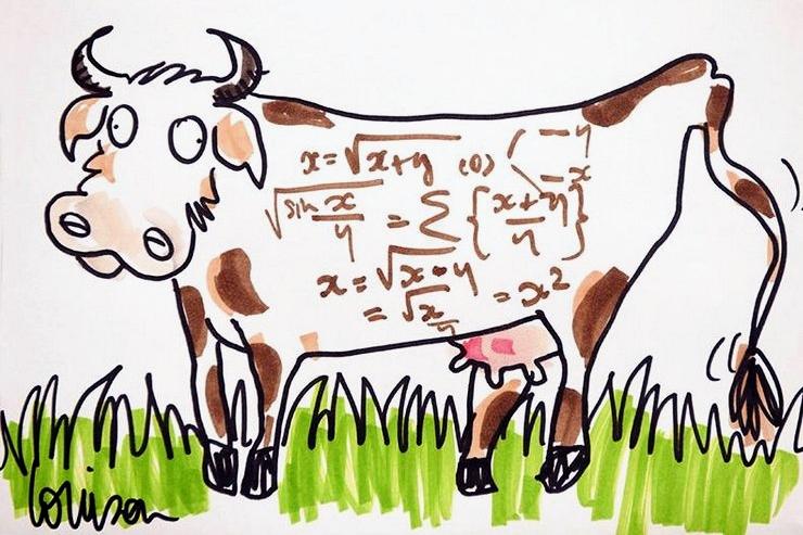 Louison-Vache-Innovation