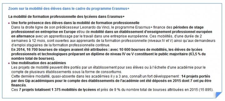 strategie-langues-Mobilite-Erasmus-Plus